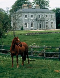 This is a photograph of the front of the manor, and this is the horse that I was on.